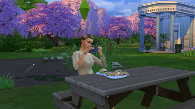 How To Review Food Or Drink On Sims