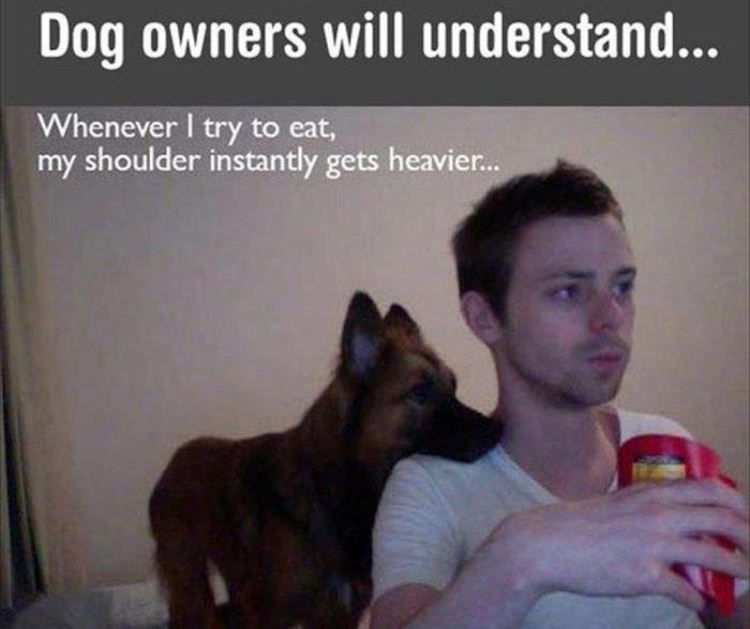 Today's Funny Photos