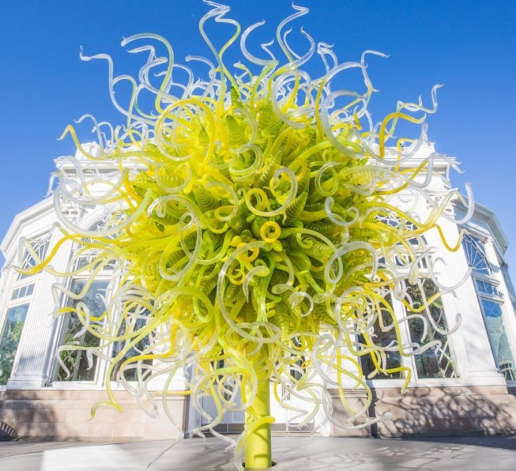 Citron Sun, Dale Chihuly, The New York Botanical Garden, 2017. Photo courtesy of The New York Botanical Garden.
