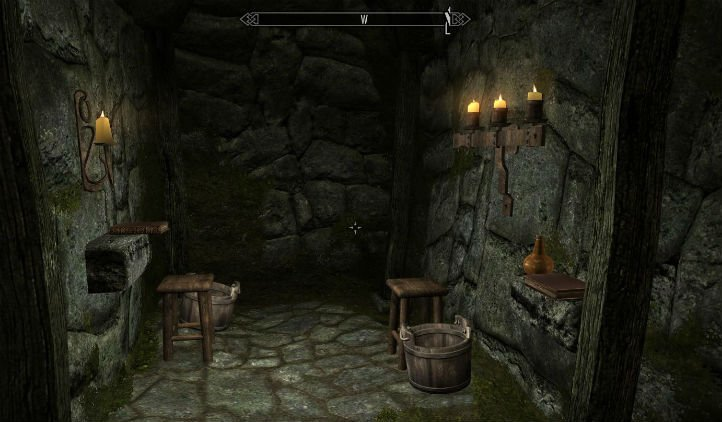 play skyrim on toilet
