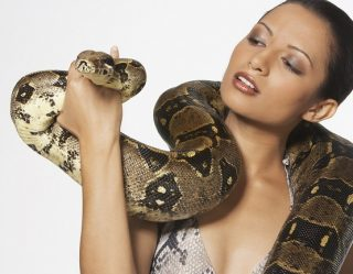 You Won't Believe How Much People Are Paying For 'Snake Massages'