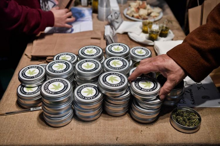 cannabis-infused