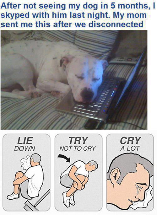 try not to cry memes are nothing to laugh about mandatory