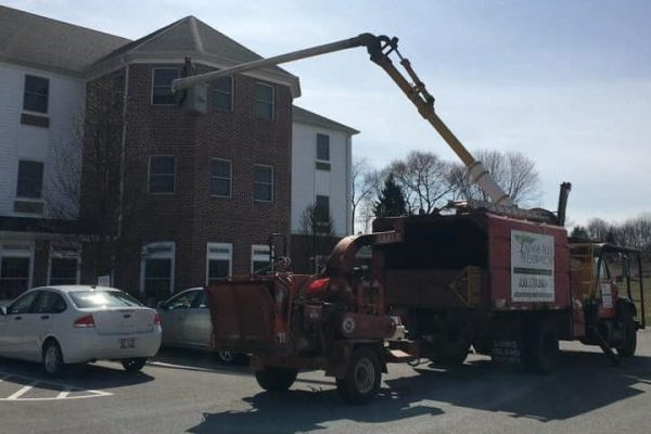 Mandatory Good News: Man Uses Bucket Truck to Visit Mom, Best Kind of Mama's Boy