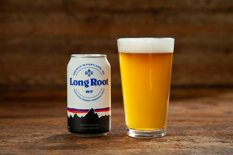 Patagonia Provisions Long Root Wit