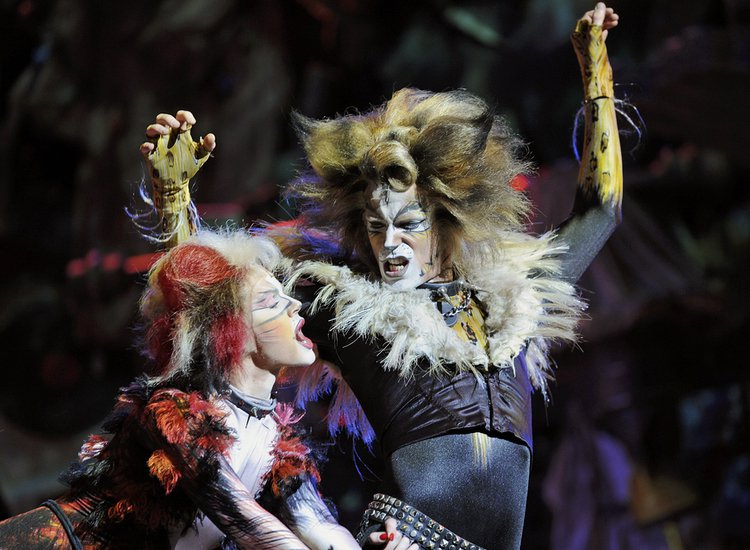 Scientists Developing Human Organs in Animals, 'Cats' Musical Slowly Becoming a Reality