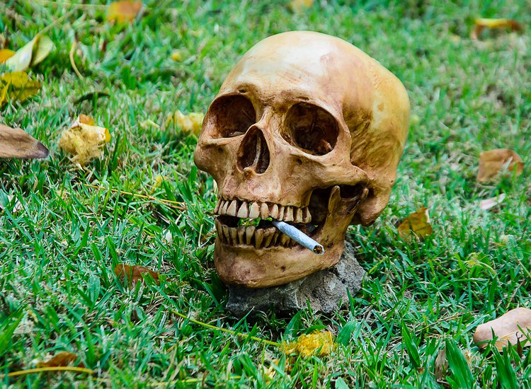 People Smoked Cannabis Back in the Day to Talk to Ghosts